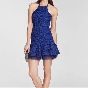 BCBGMAXAZRIA Basanti Flared Skirt Dress 🌿